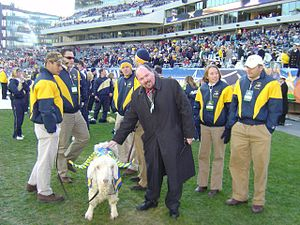 Bill the Goat - Bill at the 2004 Army–Navy Game.