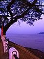 Binh minh tren song Me kong tan chau , an giang - panoramio.jpg