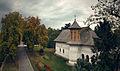 Biserica Mogoșoaia (11).jpg