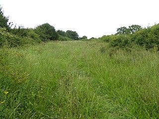 Black Bourn Valley Suffolk Wildlife Trust nature reserve