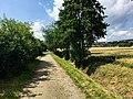 Blick auf Feldweg Richtung Neuhof - panoramio.jpg