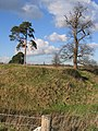 Blob Hill, Aldford - geograph.org.uk - 330577.jpg