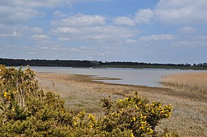 Blythburgh - Marshes on the River Blyth at Blythburgh