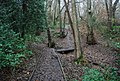 Boardwalk path through Barnetts Wood - geograph.org.uk - 1064615.jpg