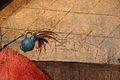 Bosch (o copia da), tentazioni di s. antonio, 1500 ca. 38.JPG