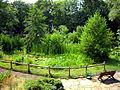 Botanischer Garten BS - Erweiterungsteil - Abt. C.jpg