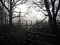 Bridge over Raisdale Beck - geograph.org.uk - 1615883.jpg
