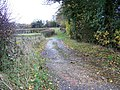 Bridleway, Lambourn Woodlands - geograph.org.uk - 1652146.jpg