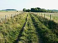 Bridleway to Roundway Hill Covert, near Heddington - geograph.org.uk - 1536340.jpg