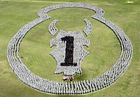A Brigade combat team forming a logo on a field during a farewell ceremony