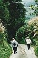 Brompton Regis (3) (1491482411).jpg