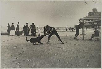 George Bradford Brainerd - Image: Brooklyn Museum Boy and Dog, Iron Pier, Coney Island, Brooklyn George Bradford Brainerd overall