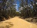 Brooman NSW 2538, Australia - panoramio (120).jpg