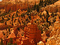Bryce Canyon National Park 4889407495.jpg