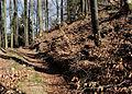 Burgstall Egg (Ebenweiler)-3654.jpg