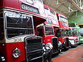 Bus lineup, Museum of Transport in Manchester, 15 June 2011.jpg