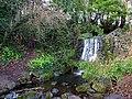 Bushy Park, Dublin -146497 (46427165412).jpg