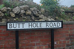 Butt Hole Road.jpg