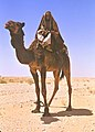 By Bert Seal ph Weekend-at-a-Bedouin-Camp 01.jpg