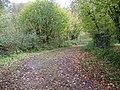 Byway near Hale - geograph.org.uk - 1578887.jpg