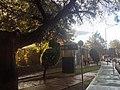 C.U. - panoramio (2).jpg