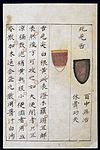 C14 Chinese tongue diagnosis chart Wellcome L0039597.jpg