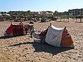 Camels - panoramio (1).jpg