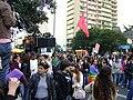 Caminhada lésbica 2009 sp 67.jpg