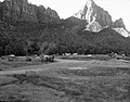 Camper use of overflow area, South Campground overcrowding group area. ; ZION Museum and Archives Image ZION 9247 ; ZION 9247 (5806dfbb254f40bd82638fb404621bce).jpg