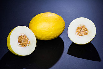 Canary melon - Image: Canary melon 2010
