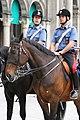 Carabinieri a cavallo.jpg