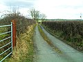 Carrickabolie Road, Drumnahavil - geograph.org.uk - 1765689.jpg