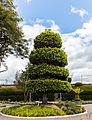 Cementerio, Tulcán, Ecuador, 2015-07-21, DD 42.JPG