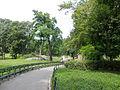 Central Park New York August 2012 001.jpg