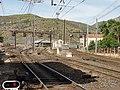 Cerbère 2012 07 22 10.jpg
