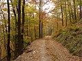 Cesta pod hrebeňom - panoramio.jpg