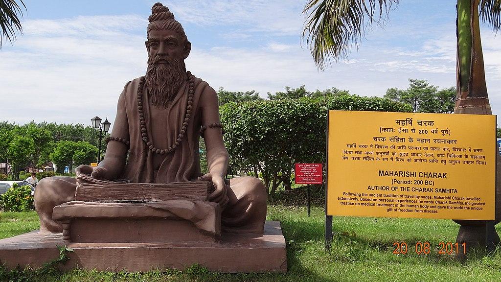 مجسمه چاراکا، دانشمند و طبیب آیورودا
