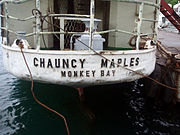 Chauncy Maples4