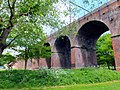 Chelmsford Viaduct over River Cann.jpg