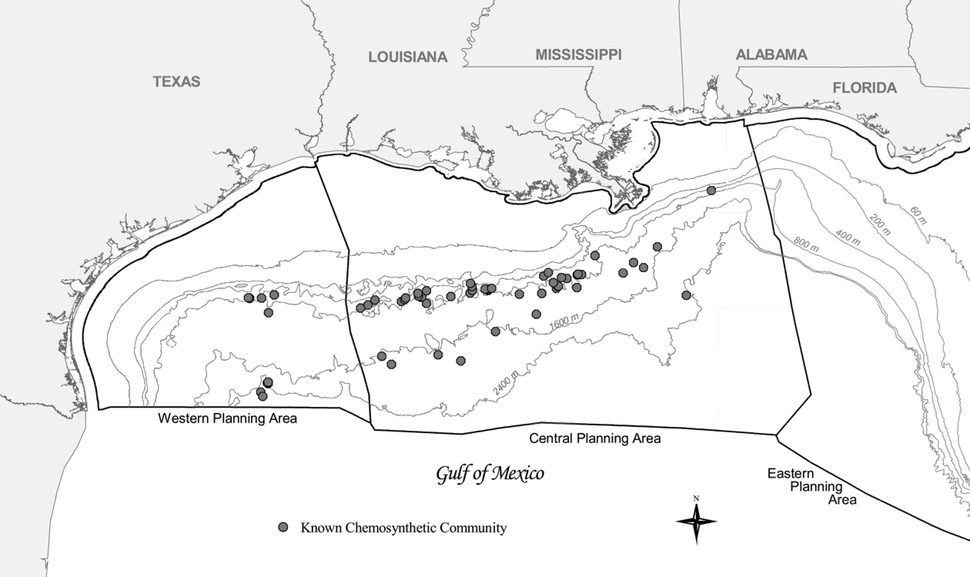 Chemosynthetic communities in the Gulf of Mexico 2006