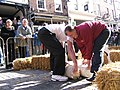 Chester Cheese Rolling Competition 2008 competitors in Chester, England.jpg