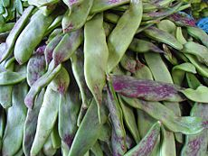 Chinese vegetable 025.jpg