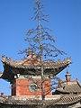 Choijin Lama Ulan Bator 301607303 c2ea4c3788 o.jpg