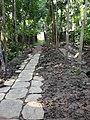 Choto Gourichanna, Phuljhury, Barguna - panoramio (3).jpg