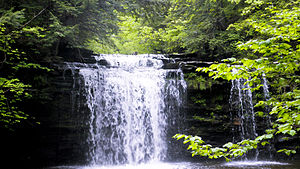 Christman Bird and Wildlife Sanctuary - Image: Christman Sanctuary, Main Waterfall 2
