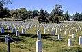Christmas Sacrificed, Arlington National Cemetery 1972 E (11453750175).jpg