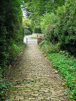 Church path - Corton Denham - geograph.org.uk - 1476968