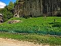Cimitirul de la Corbii Mari.jpg