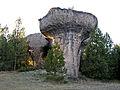 CiudadEncantada Mushroom.jpg