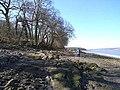 Coast path west of Arnside - geograph.org.uk - 1230320.jpg